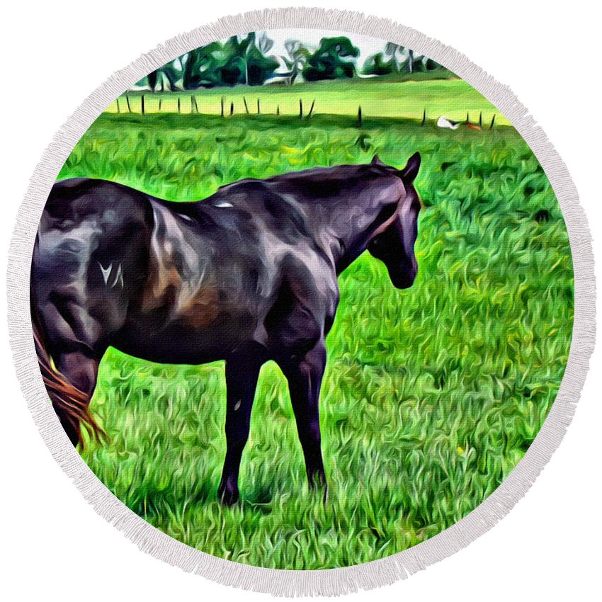 Stallion Round Beach Towel featuring the photograph Black Stallion In Pasture by Alice Gipson