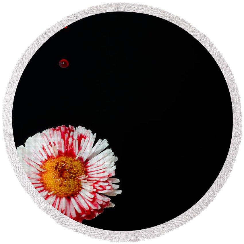 Flower Round Beach Towel featuring the photograph Bleeding Flower by Mats Silvan