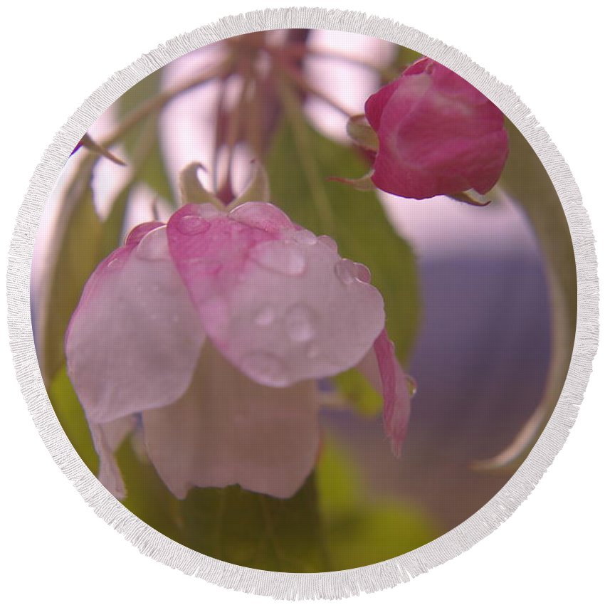 Flowers Round Beach Towel featuring the photograph Blomming In The Rain by Jeff Swan