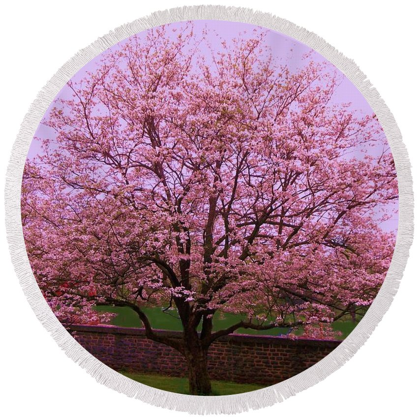 Blossoming Round Beach Towel featuring the painting Blossoming Almond Tree by Eric Schiabor