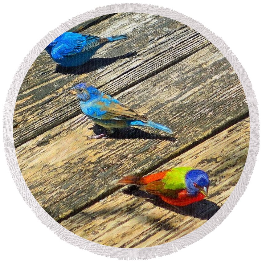 Indigo Buntings Round Beach Towel featuring the photograph Blue And Indigo Buntings - Three Little Buntings by Rebecca Korpita