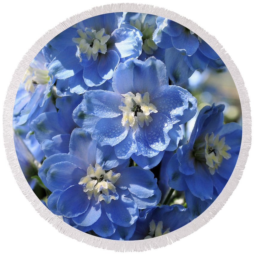 Flower Round Beach Towel featuring the photograph Blue Delphinium 9656 by Terri Winkler