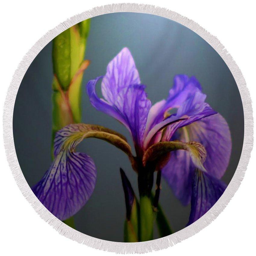 Blue Flag Iris Round Beach Towel featuring the painting Blue Flag Iris Flower by Smilin Eyes Treasures