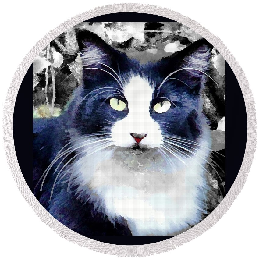 Cat Black White Kitty Round Beach Towel featuring the photograph Blue Kitty Two by Alice Gipson