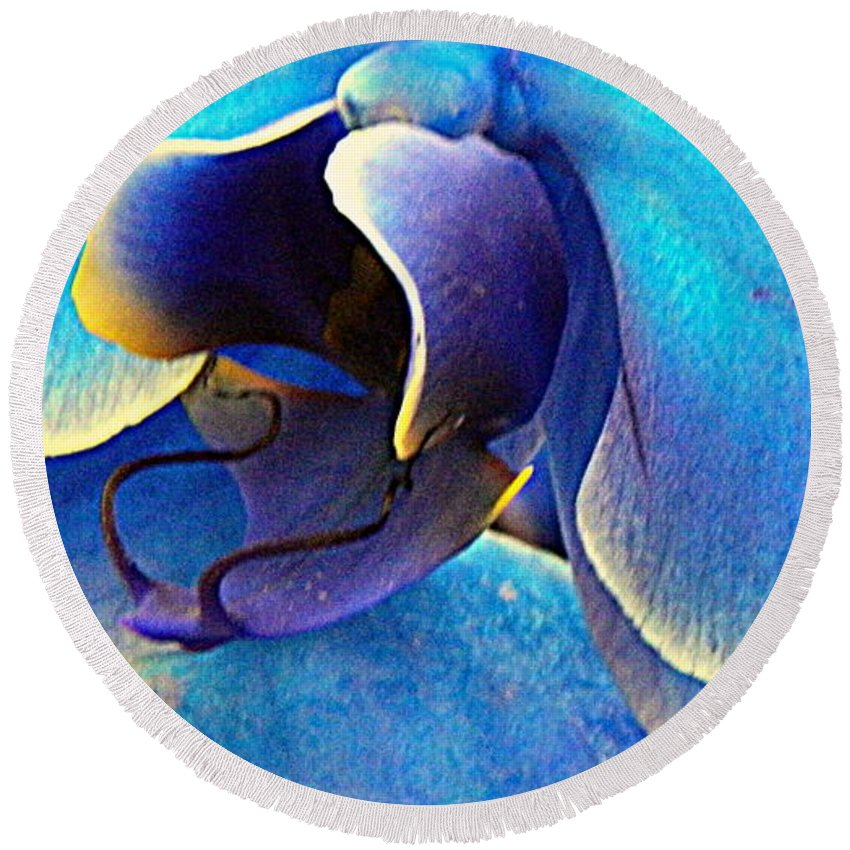 Orchid Round Beach Towel featuring the photograph Blue Orchid Macro by Kathy Barney
