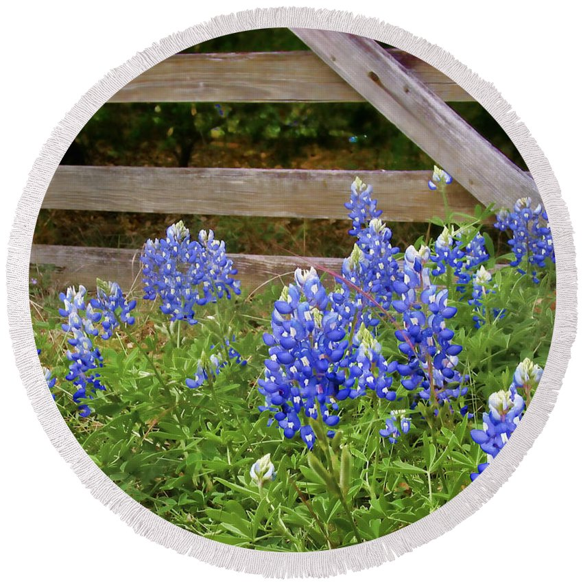 Bloom Round Beach Towel featuring the photograph Bluebonnet Gate by David and Carol Kelly