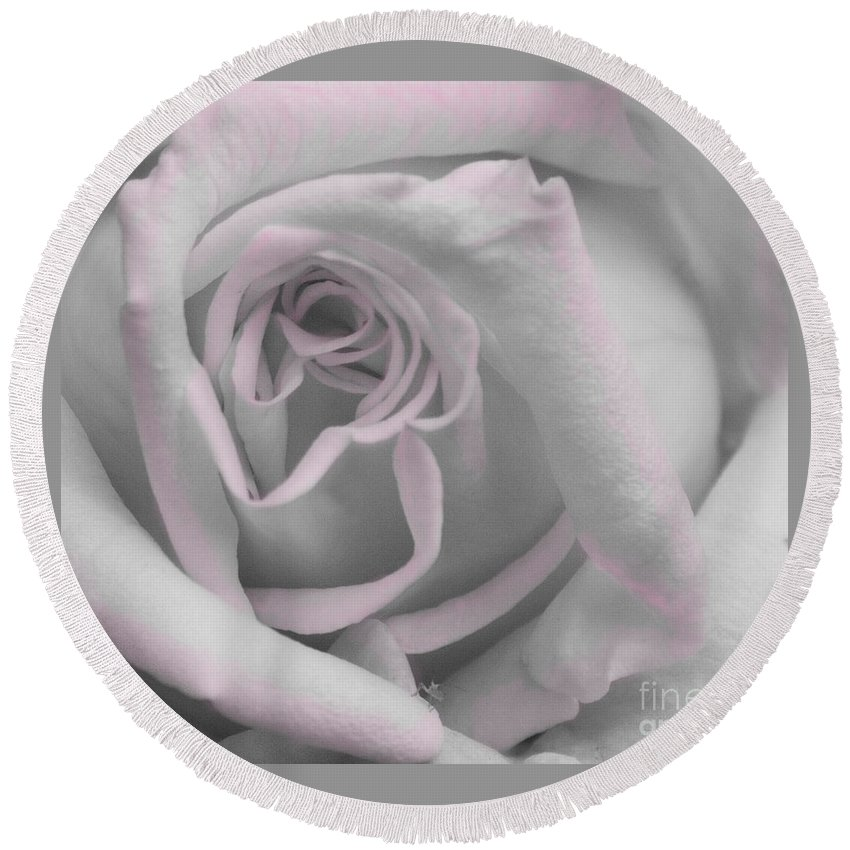 Rose Round Beach Towel featuring the photograph Blush Rose by Jim And Emily Bush