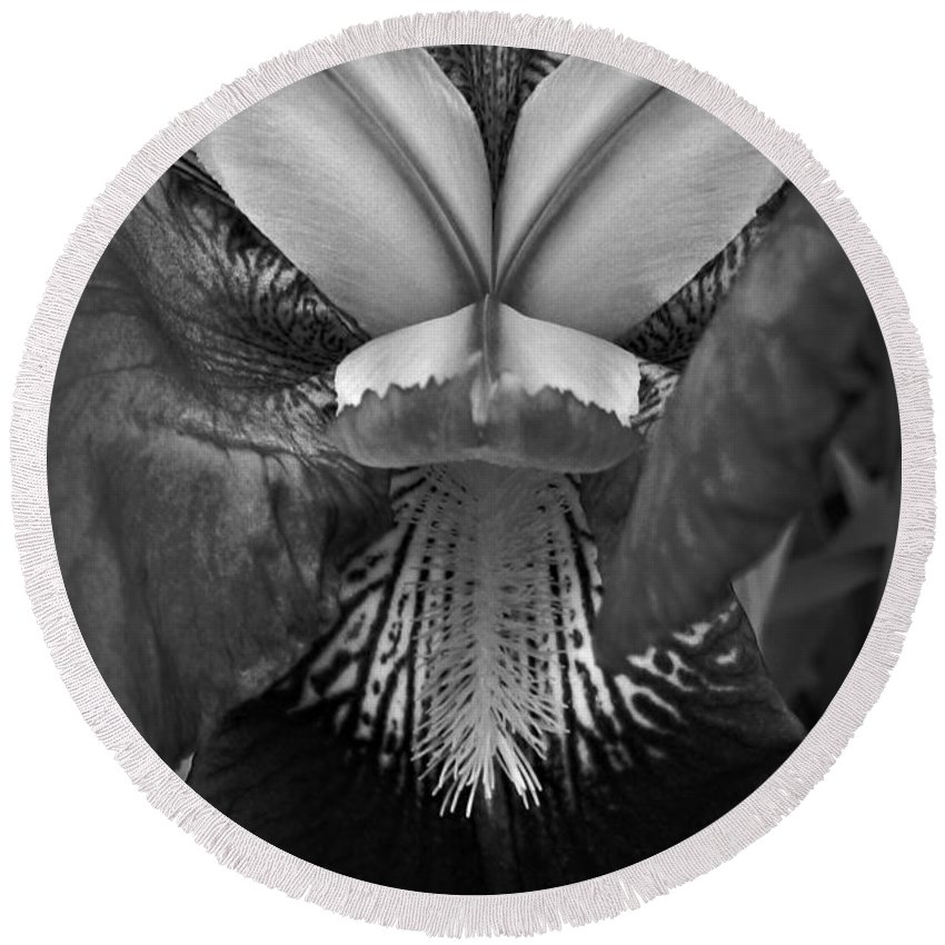 Bold Iris Bw Round Beach Towel featuring the photograph Bold Iris Bw by Chalet Roome-Rigdon