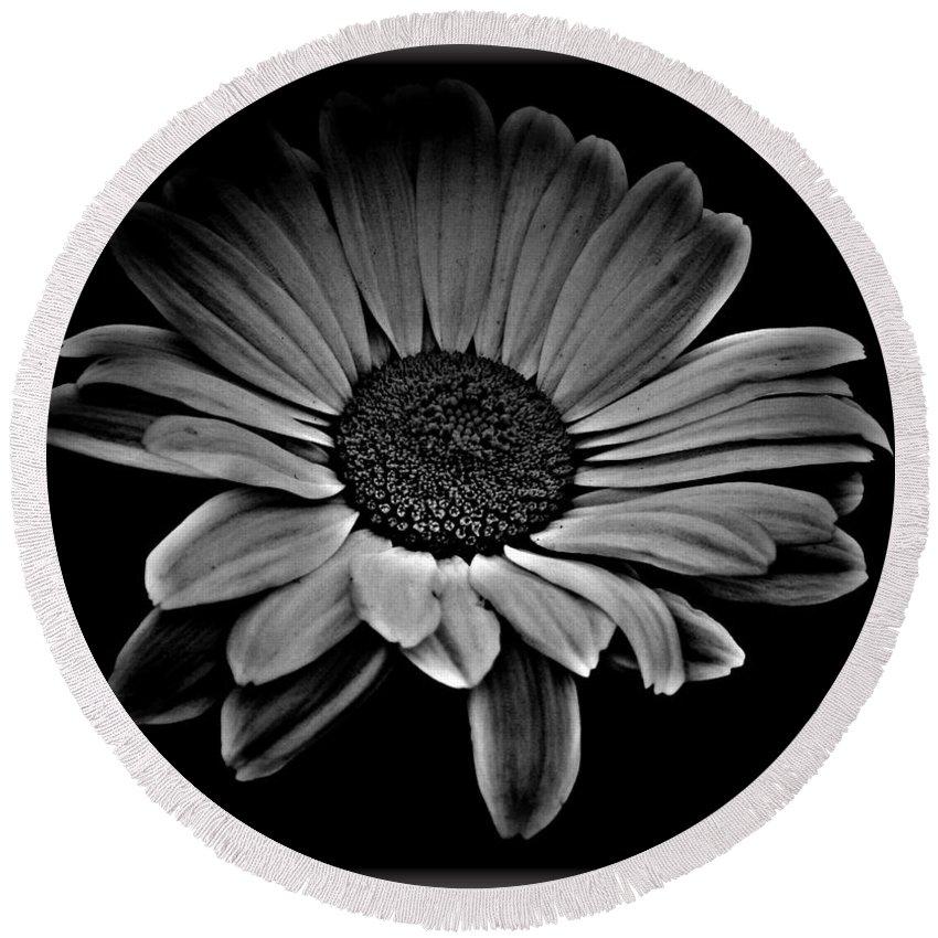 Bold Monochrome Daisy Round Beach Towel featuring the mixed media Bold Monochrome Daisy by Chalet Roome-Rigdon