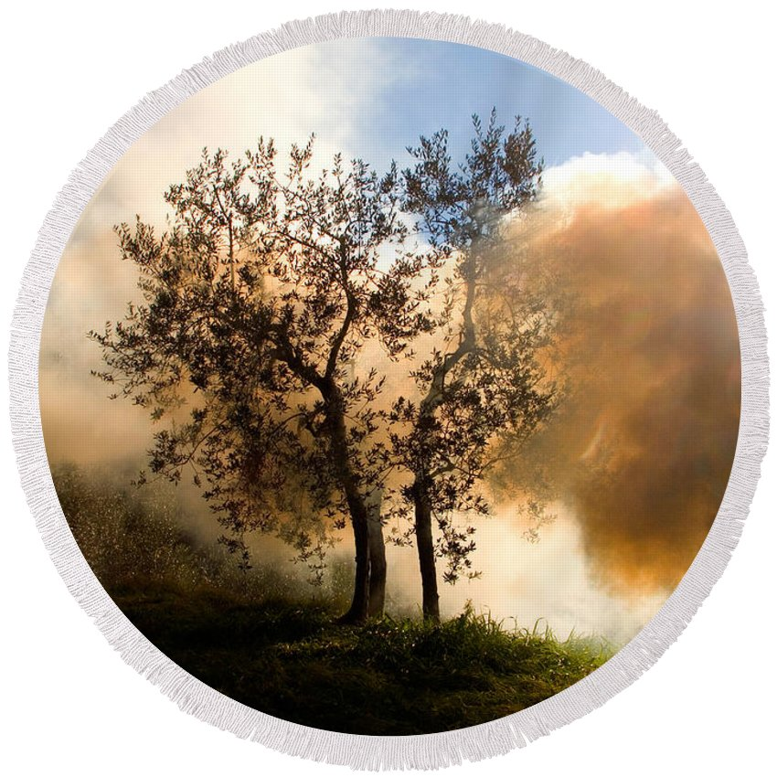 Smoke Round Beach Towel featuring the photograph Bonfire And Olive Tree by Tim Holt