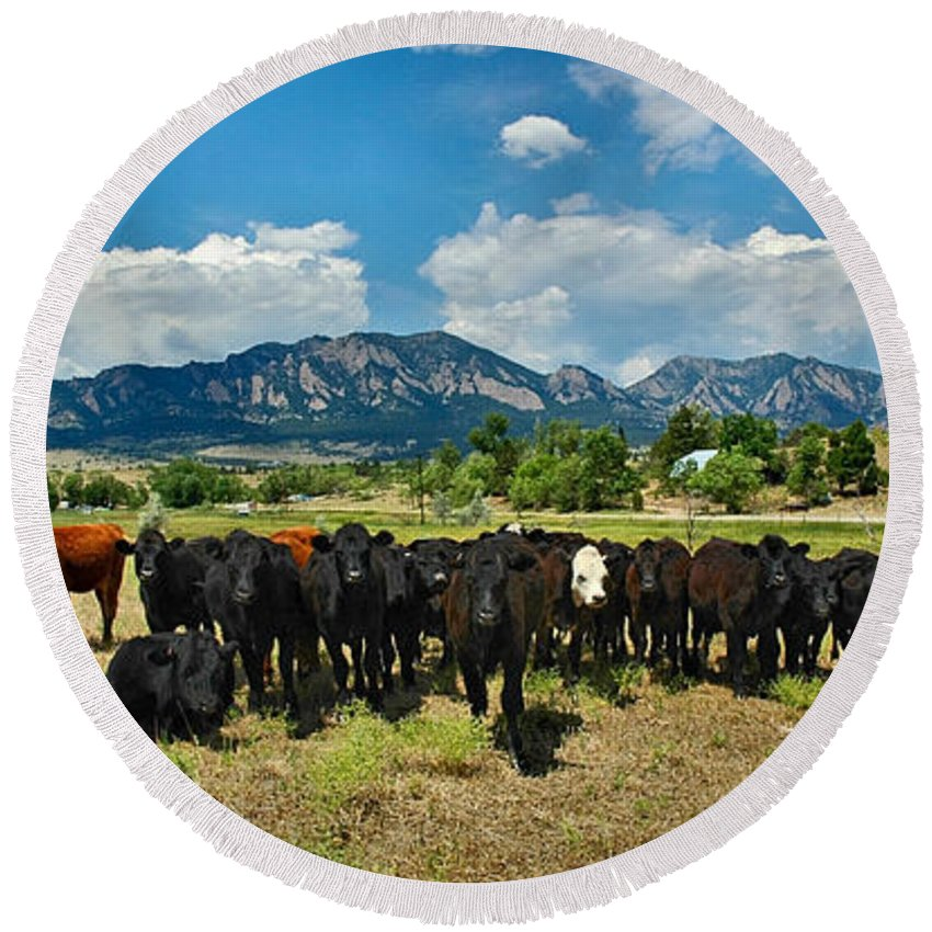 Co Round Beach Towel featuring the photograph Boulder Beef by Lynn Bauer
