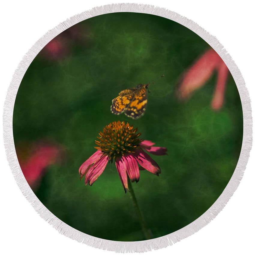 Butterflies In Nature Round Beach Towel featuring the photograph Bounce by Kim Henderson