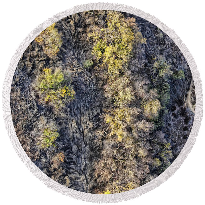 Bushes Round Beach Towel featuring the photograph Bramble by Stefan H Unger