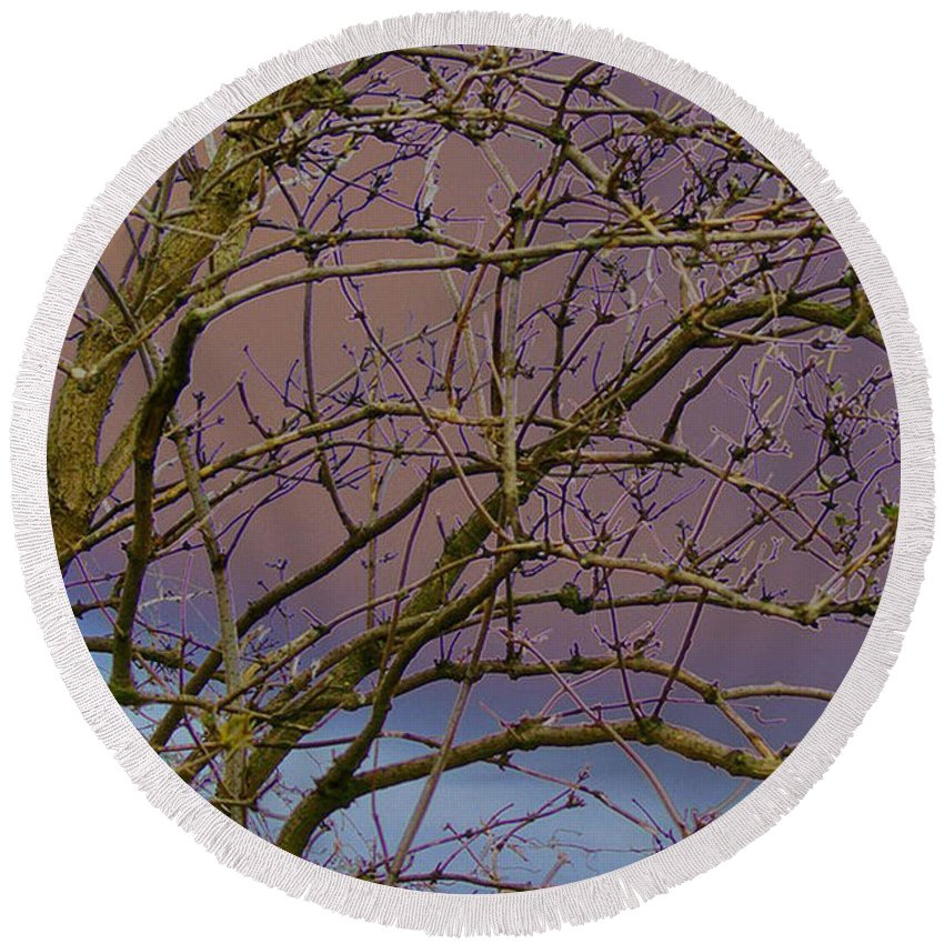 Branches Round Beach Towel featuring the digital art Branches by Carol Lynch