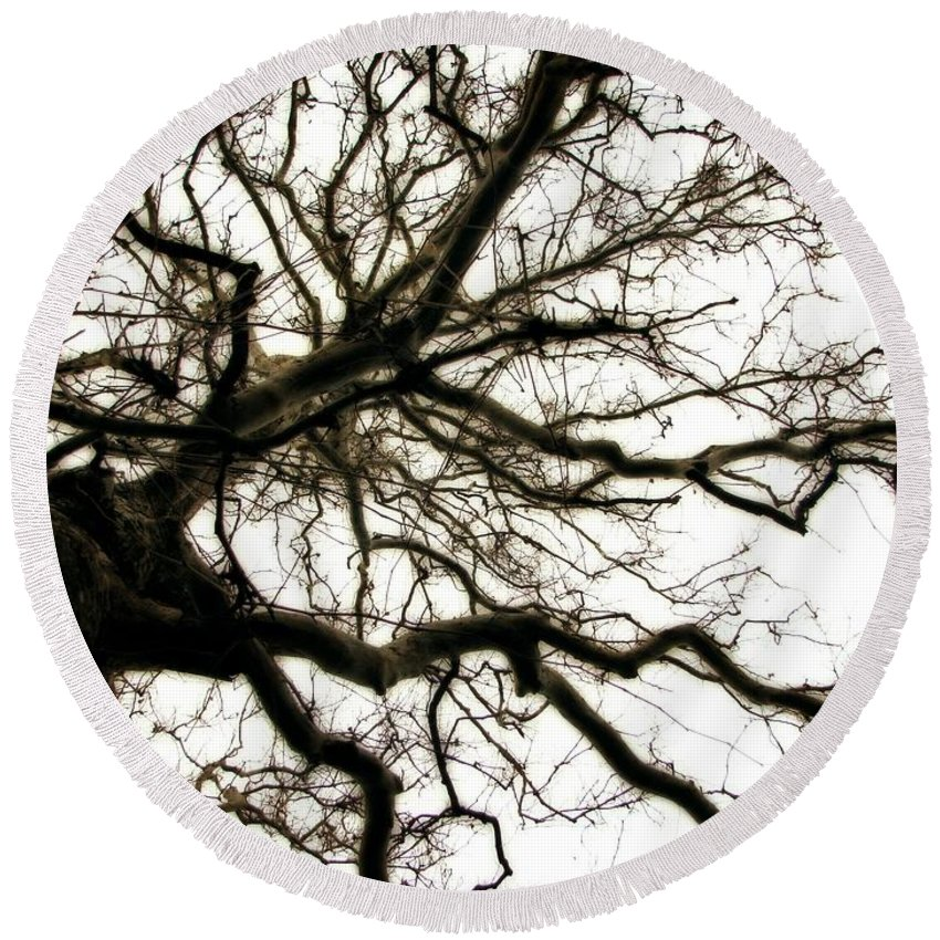 Branches Round Beach Towel featuring the photograph Branches by Michelle Calkins