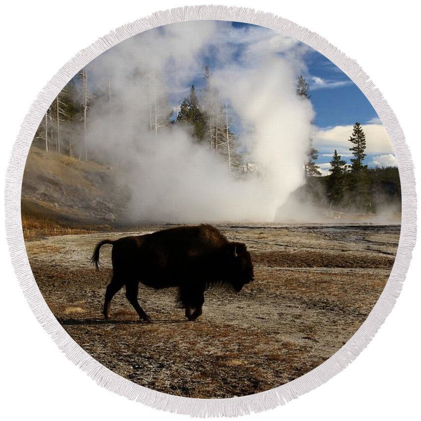 Vent Geyser Round Beach Towel featuring the photograph Breaking The Rules by Adam Jewell