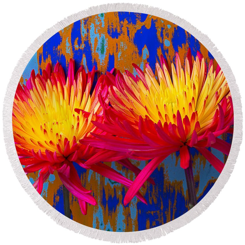 Two Round Beach Towel featuring the photograph Bright Colorful Mums by Garry Gay