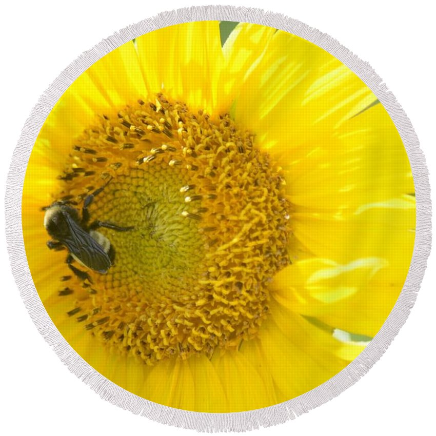 Bright Sunflower 2013 Round Beach Towel featuring the photograph Bright Sunflower 2013 by Maria Urso