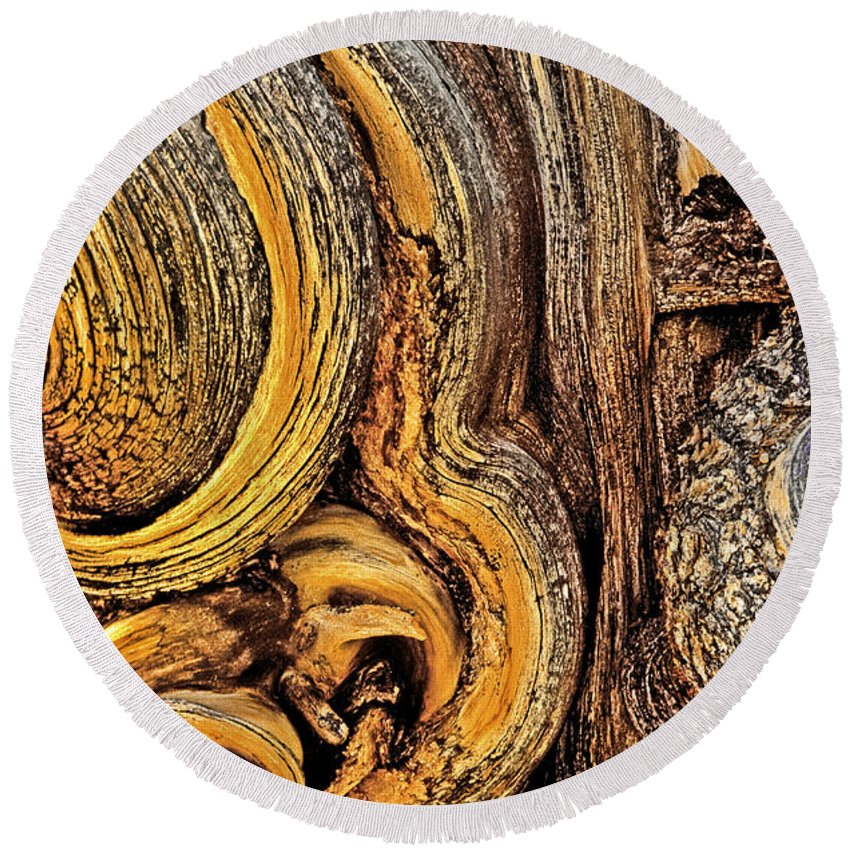 Bristlecone Pine Round Beach Towel featuring the photograph Bristlecone Pine Bark Detail White Mountains Ca by Dave Welling