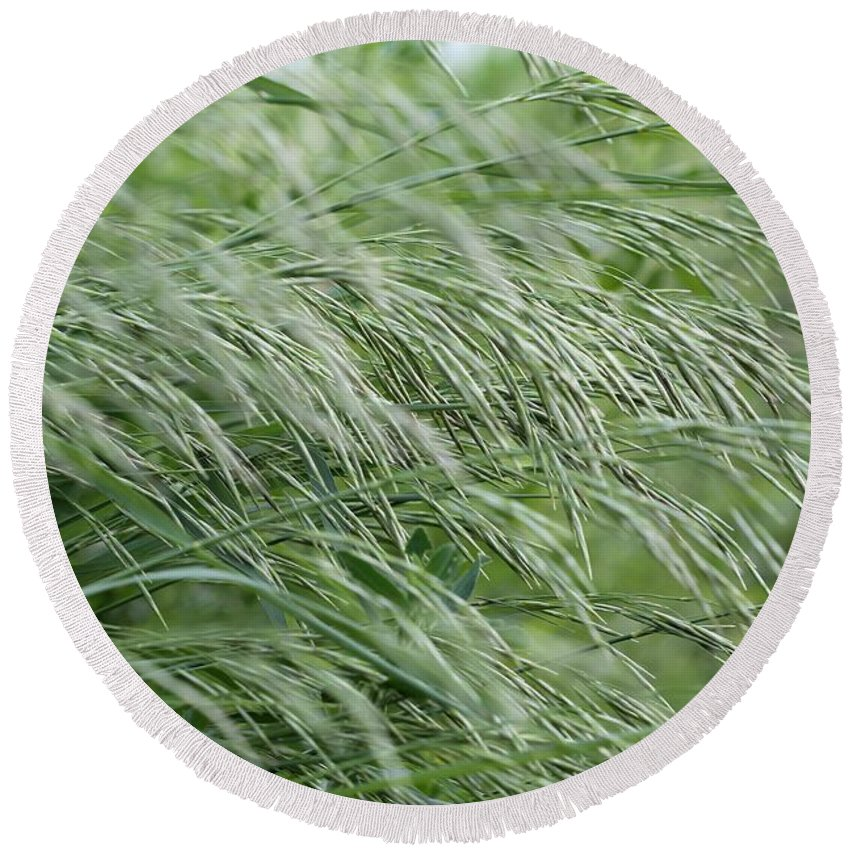 Mccombie Round Beach Towel featuring the photograph Brome Grass In The Hay Field by J McCombie