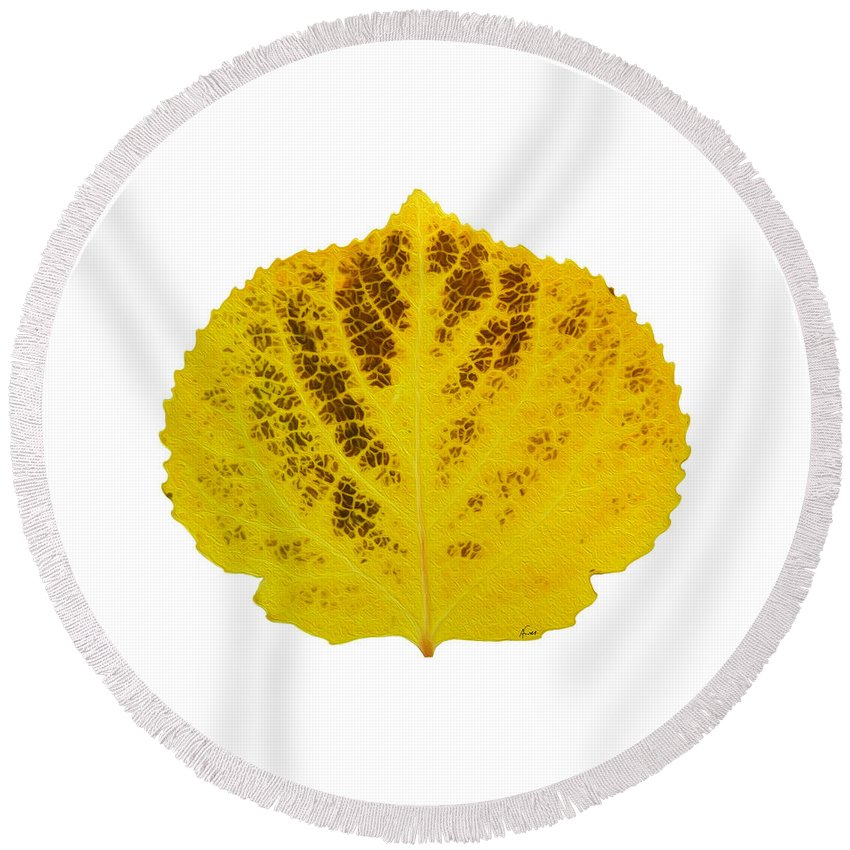 Aspen Leaf Round Beach Towel featuring the digital art Brown And Yellow Aspen Leaf 3 by Agustin Goba