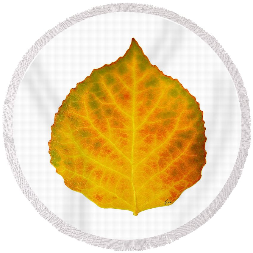 Aspen Leaf Round Beach Towel featuring the digital art Brown Green Orange Red And Yellow Aspen Leaf 3 by Agustin Goba