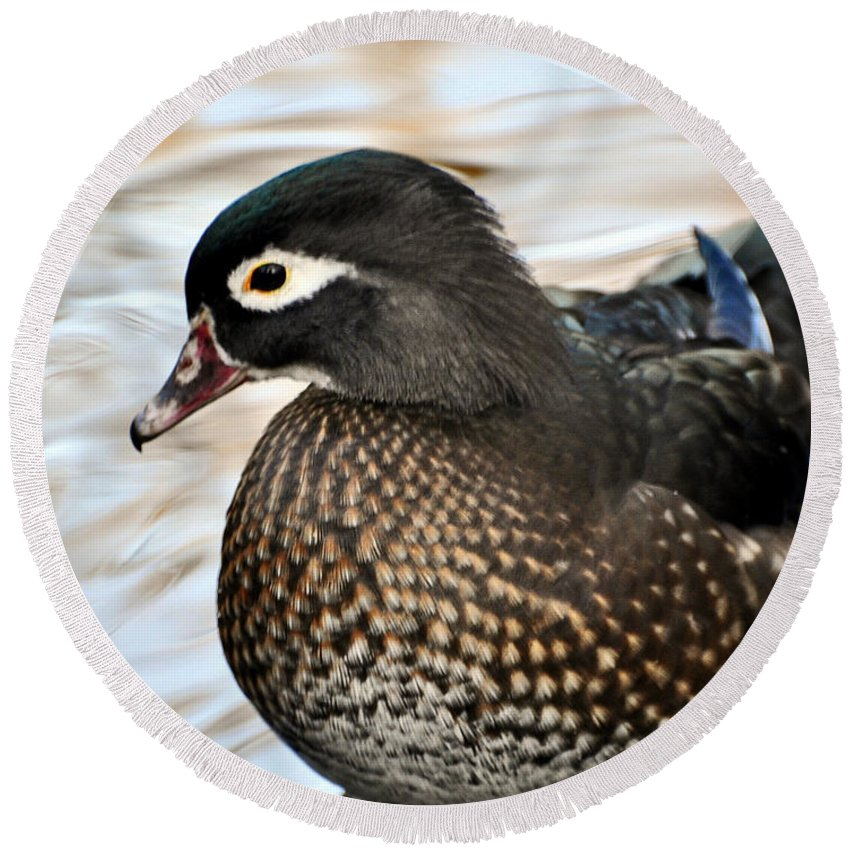 Duck Round Beach Towel featuring the photograph Brownie by Marty Koch