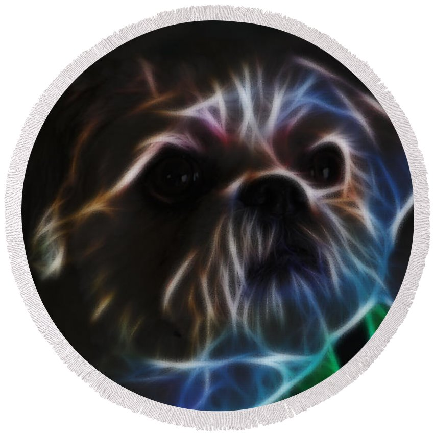 Digital Art Round Beach Towel featuring the photograph Bubba 2 by Ericamaxine Price