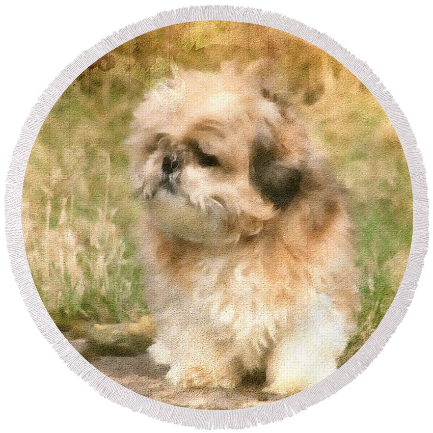 Bubba Round Beach Towel featuring the painting Shih Tzu In Oil by Ericamaxine Price
