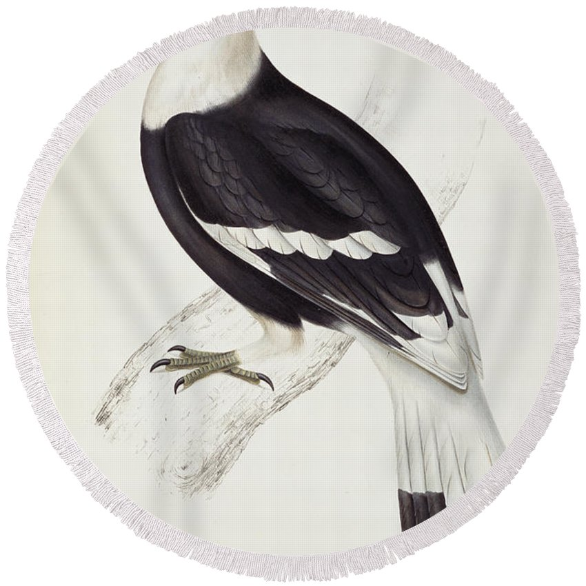 Hornbill Round Beach Towels