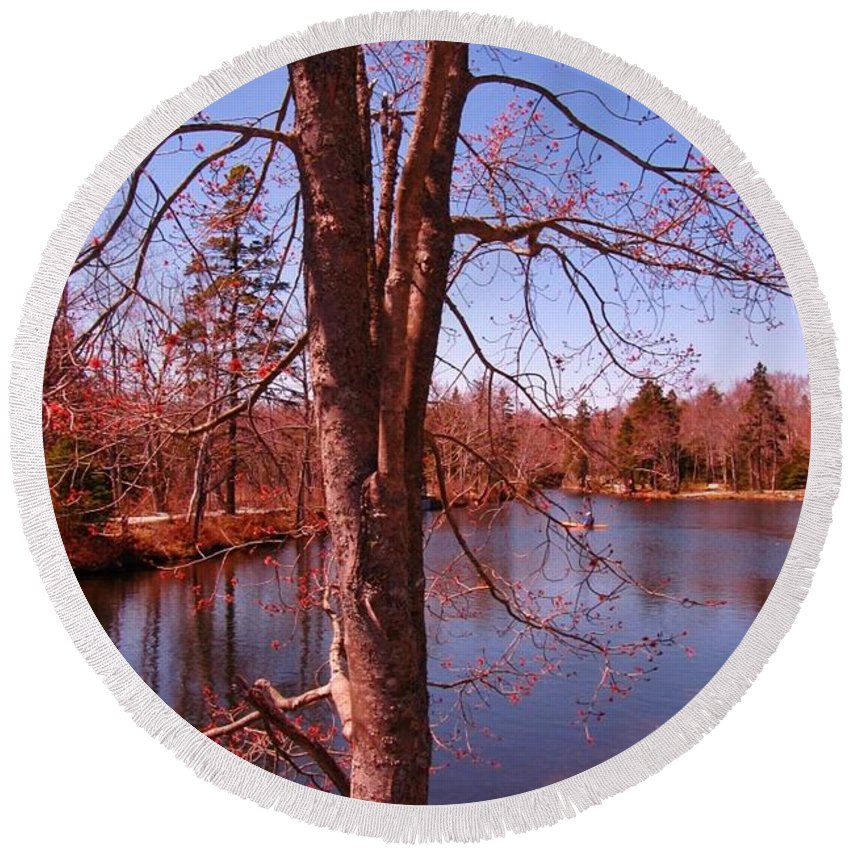 Budding Spring Tree Round Beach Towel featuring the photograph Budding Spring Tree by John Malone