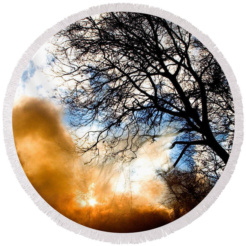 Plant Round Beach Towel featuring the photograph Burning Olive Tree Cuttings by Tim Holt