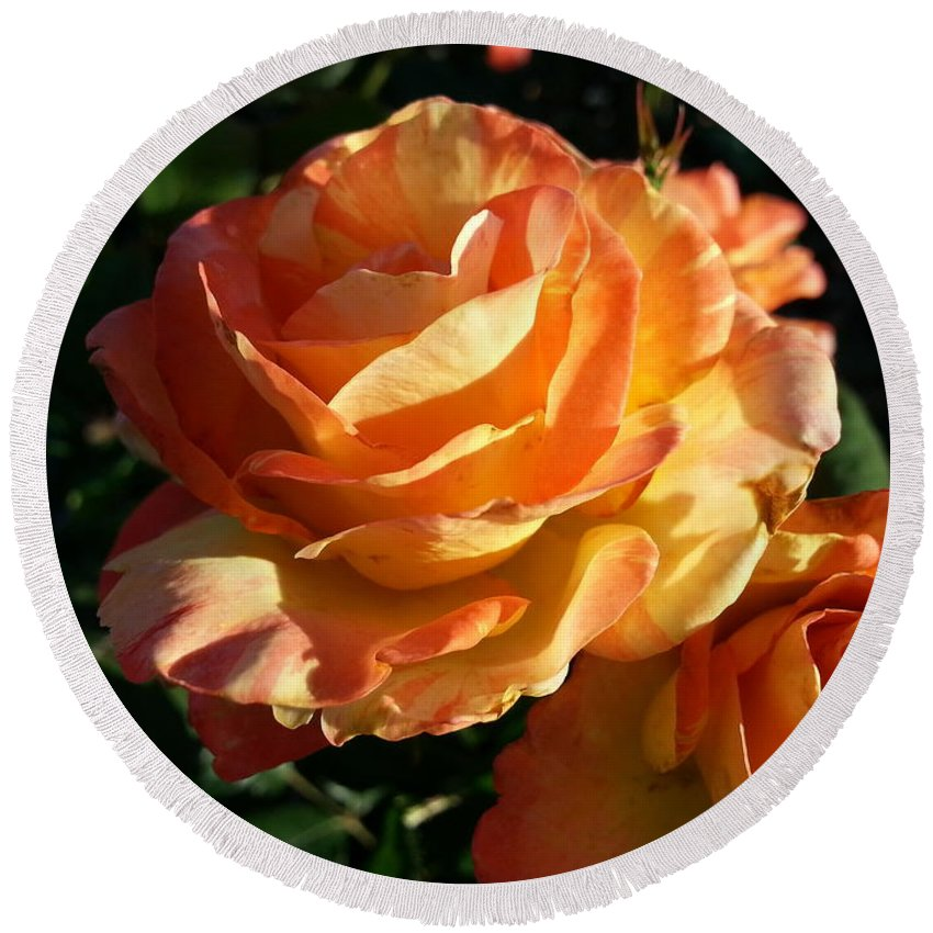 Orange Round Beach Towel featuring the photograph Burnt Rose by Caryl J Bohn