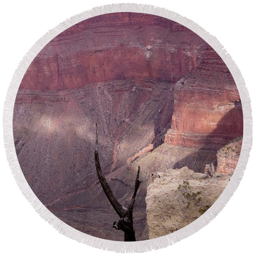 Nature Round Beach Towel featuring the photograph Burnt Tree by Mary Mikawoz
