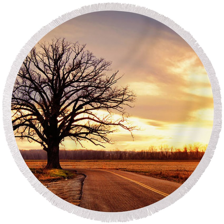 Old Round Beach Towel featuring the photograph Burr Oak Silhouette by Cricket Hackmann