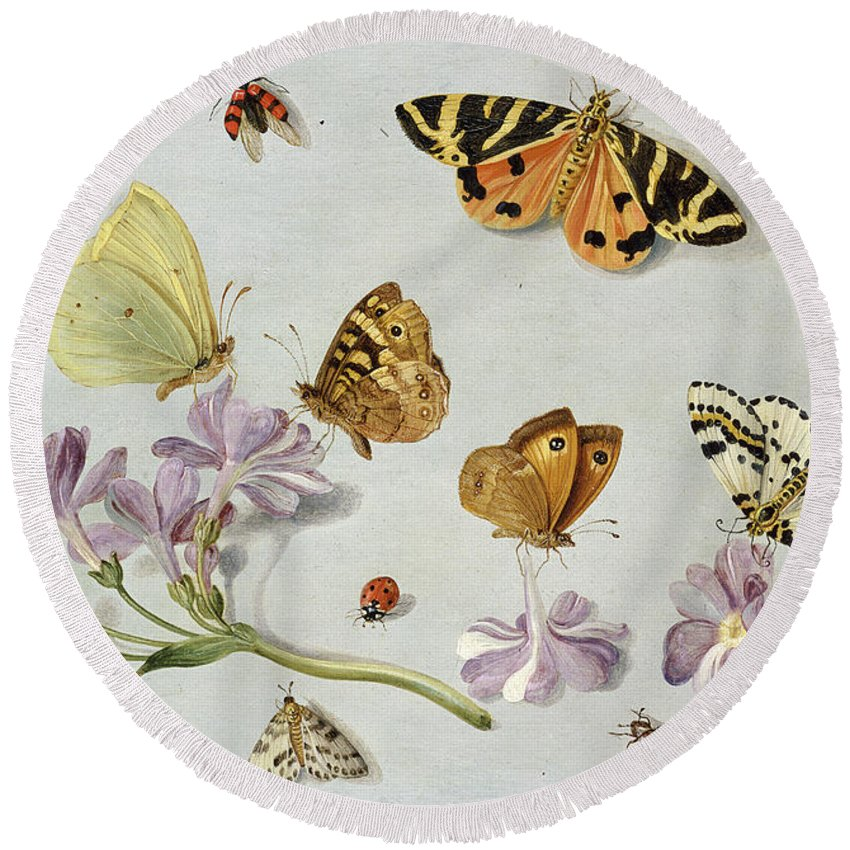 Still Life Round Beach Towel featuring the painting Butterflies by Jan Van Kessel
