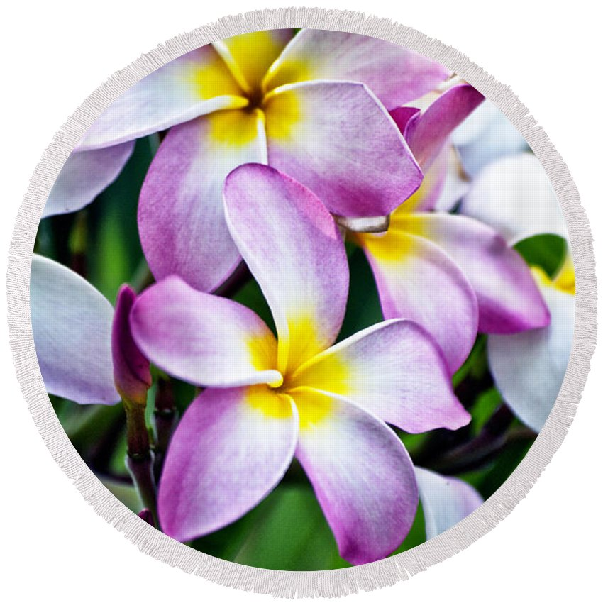 Butterfly Flowers Round Beach Towel featuring the photograph Butterfly Flowers by Thomas Woolworth