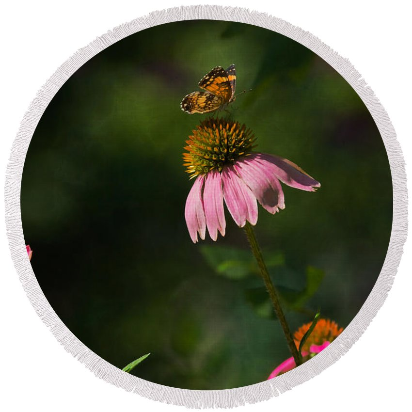 Butterfly Round Beach Towel featuring the photograph Butterfly Garden by Kim Henderson