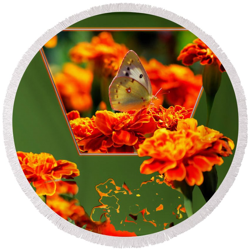 Butterfly Round Beach Towel featuring the photograph Butterfly In A Sea Of Orange Floral 02 by Thomas Woolworth
