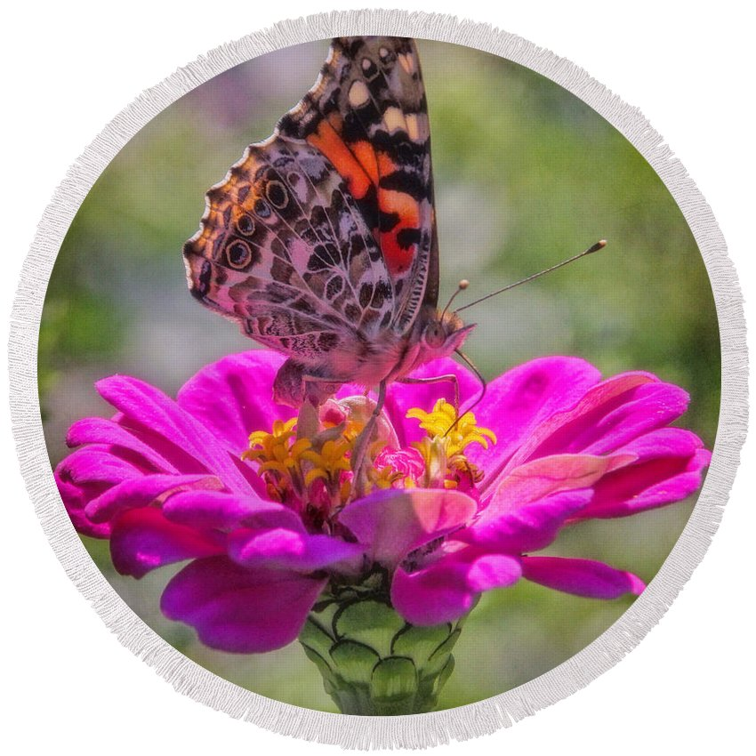 Red Admiral Butterfly Round Beach Towel featuring the photograph Butterfly Kisses by Elizabeth Winter