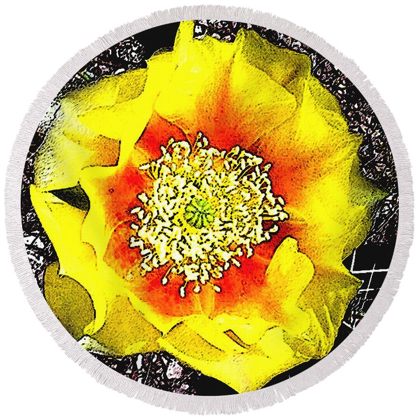 Cactus Round Beach Towel featuring the photograph Cactus Flower by Jerome Stumphauzer