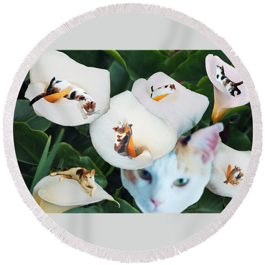 Cat Round Beach Towel featuring the digital art Cala in Callas by Lisa Yount