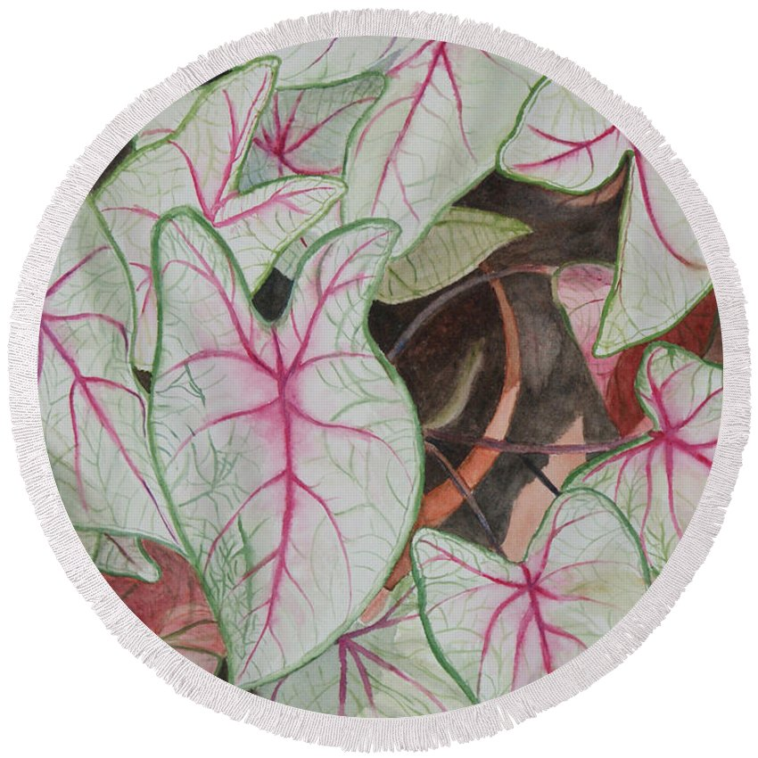 Floral Round Beach Towel featuring the painting Caladiums by Jill Ciccone Pike