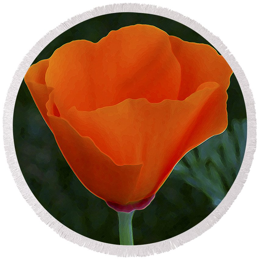 California Poppy Round Beach Towel featuring the photograph California Poppy Spectacular by Ben and Raisa Gertsberg