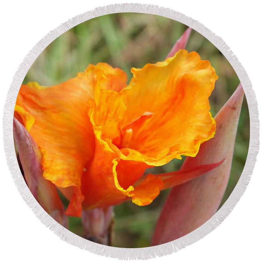 Duane Mccullough Round Beach Towel featuring the photograph Calla Lilly by Duane McCullough