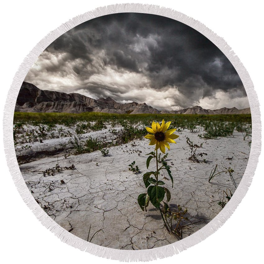 #badlands #badlands National Park #south Dakota #storm #storm Clouds #stormy #thunderstorm #wall #beauty #clouds #crack #cracked Ground #cracks #dangerous #earth #flower #ground #nature #rock Formations #rugged Terrain #severe #sky #weather #weed #yellow Round Beach Towel featuring the photograph Calm Before The Storm by Aaron J Groen