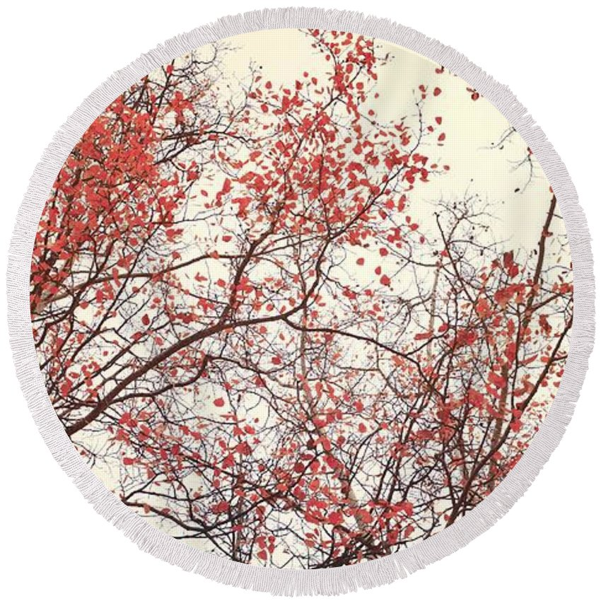 Red Round Beach Towel featuring the photograph canopy trees II by Priska Wettstein