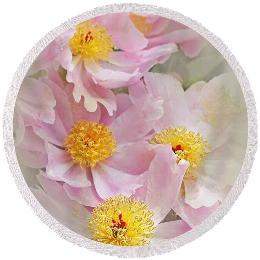 Peony Round Beach Towel featuring the photograph Cascading Pink Peony Flowers by Jennie Marie Schell