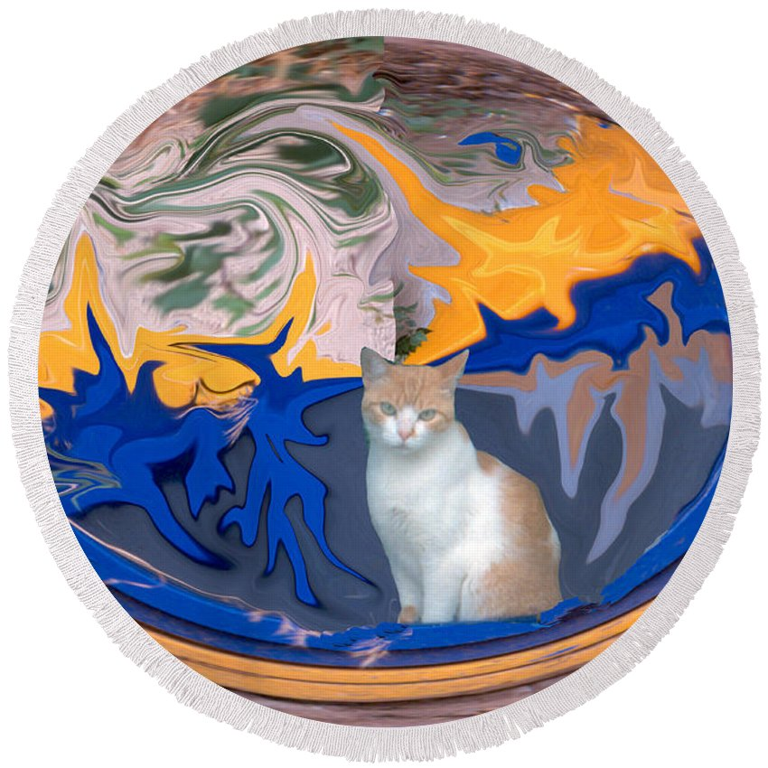 Cat Round Beach Towel featuring the photograph Cat In Doorway Fantasy by Ana Gonzalez