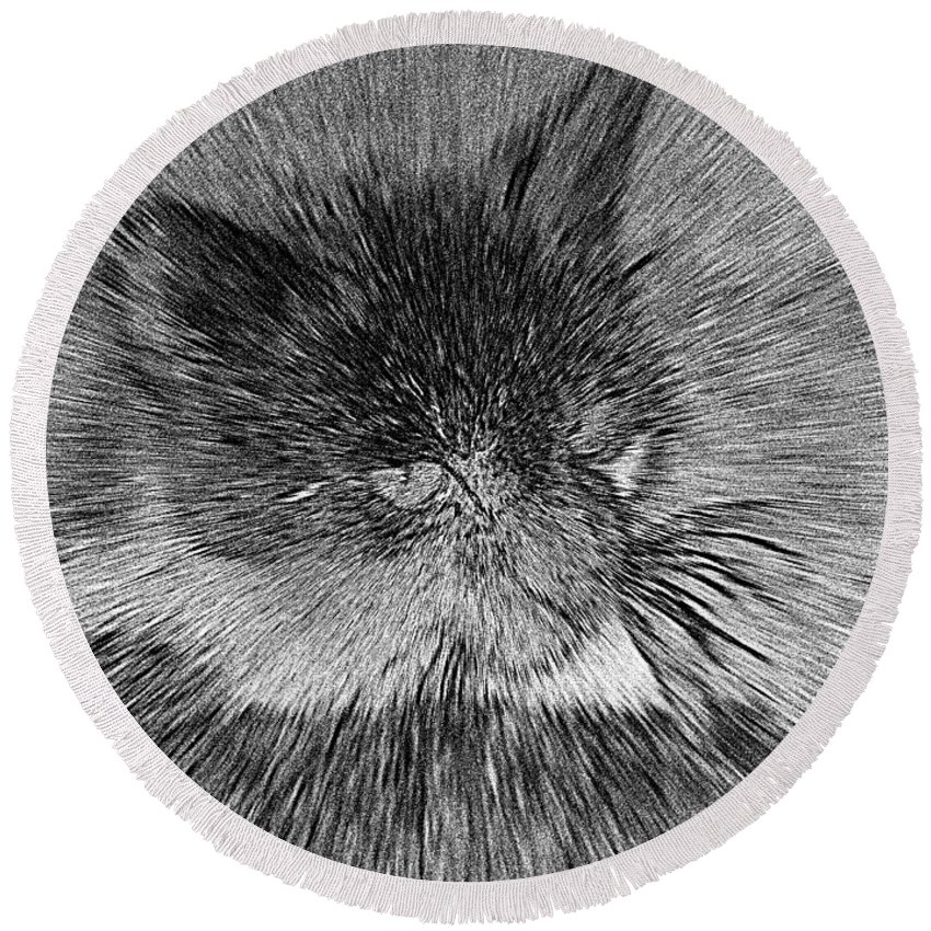 2d Round Beach Towel featuring the photograph Cat - India Ink Effect by Brian Wallace